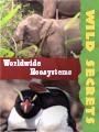 Wild Secrets Ecosystems