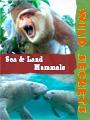 Wild Secrets Mammals