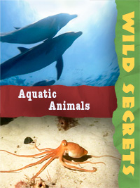 Wild Secrets Aquatic
