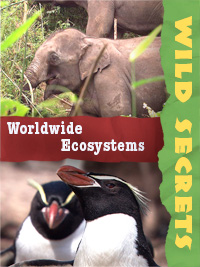 Worldwide Ecosystems